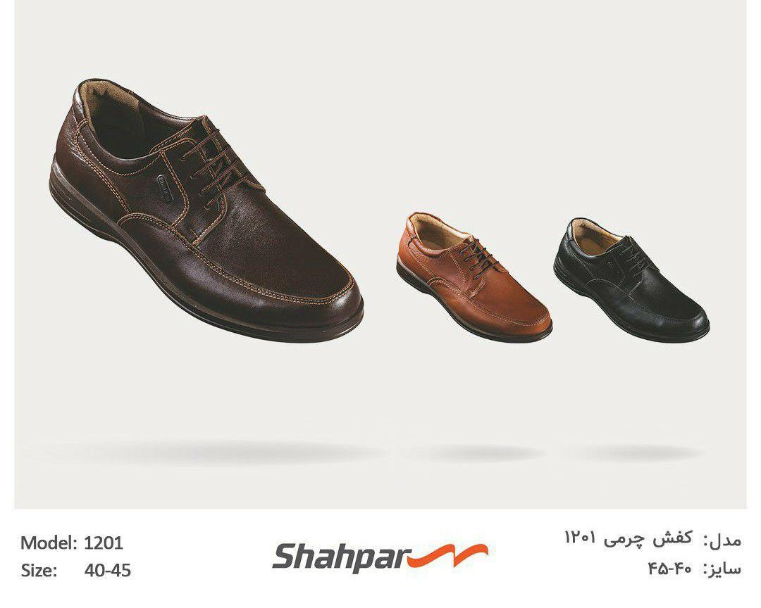 کفش چرمی ۱۲۰۱