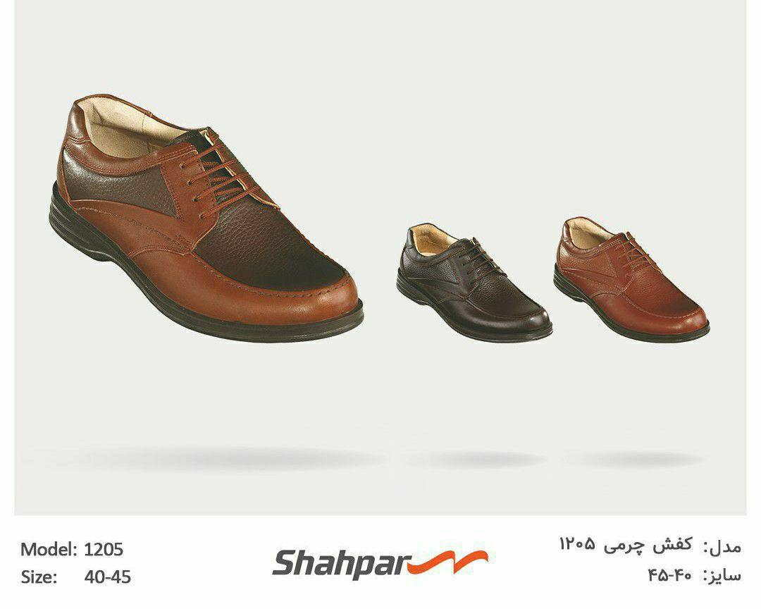 کفش چرمی ۱۲۰۵
