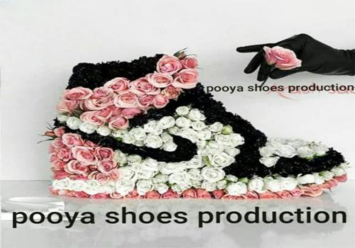 کفش پویا اصل