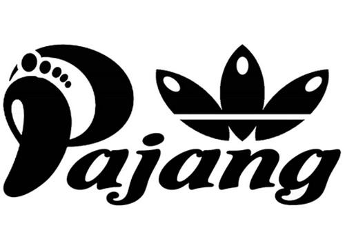 کفش پاژنگ